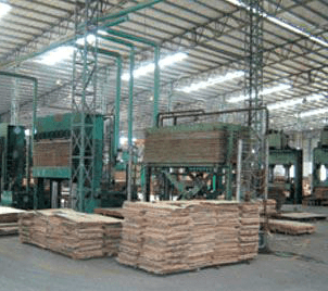 Ply Wood Manufacturer